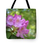 Pink Flowering Rhododendron Bush In Full Bloom Tote Bag