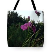 Pink Flowers In Front Of Trees Tote Bag