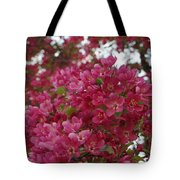Pink Flowers On Blooming Tree Tote Bag