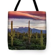 Pink Four Peaks Sunset  Tote Bag
