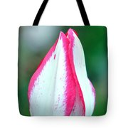 Pink Fringed Tote Bag