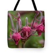Pink Fuzz 3 - Square Tote Bag