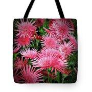 Pink Gerbera Heaven Tote Bag