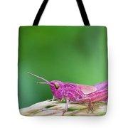 Pink Grasshopper Tote Bag