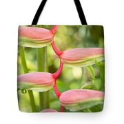 Pink Heliconia Flower Tote Bag