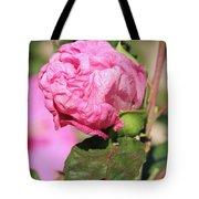 Pink Hibiscus Bud Tote Bag