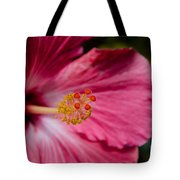 Pink Hibiscus Close-up Tote Bag