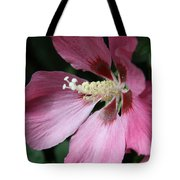 Pink Hibiscus Cose -up Tote Bag