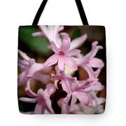Pink Hyacinth Tote Bag