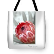 Pink Ice Protea Tote Bag