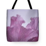 Pink Iris Study 8 Tote Bag