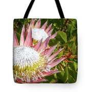 Pink King Protea Flowers Tote Bag