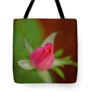 Pink Knockout Rose Tote Bag