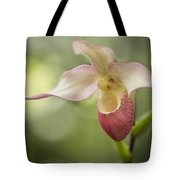 Pink Lady Slipper Tote Bag