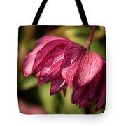 Pink Lampshade Tote Bag