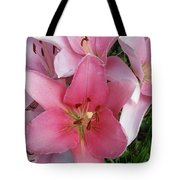 Pink Lillies 1 Tote Bag