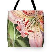 Pink Lily Close Up Tote Bag