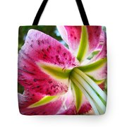 Pink Lily Summer Botanical Garden Art Prints Baslee Troutman Tote Bag