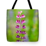 Pink Lupine Tote Bag