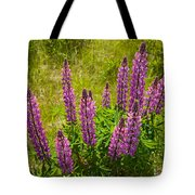 Pink Lupins Tote Bag