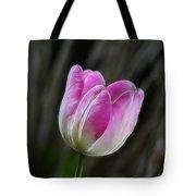 Pink On Display Tote Bag