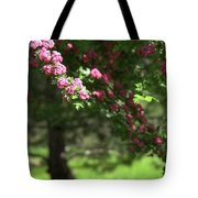 Pink Orchard Blossoms Tote Bag by Patricia Strand
