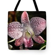 Pink Orchid And Dewdrops 013 Tote Bag