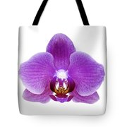 Pink Orchid On White Tote Bag
