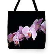 Pink Orchid Viii Tote Bag