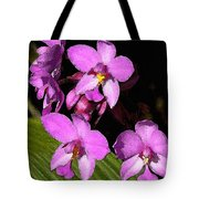 Pink Painted Orchids Tote Bag