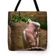 Pink Parrot Nibbling Foot 2 Tote Bag