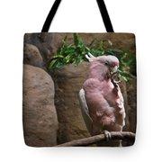 Pink Parrot Nibbling Foot Tote Bag
