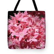 Pink Pentas Beauties Tote Bag