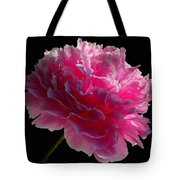 Pink Peony On A Black Background Tote Bag
