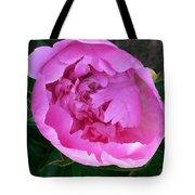 Pink Peoony In Bloom Tote Bag