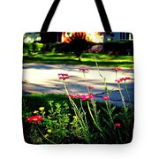 Pink Petals In The Sunlight Tote Bag