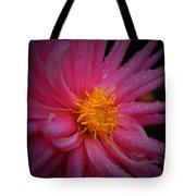 Pink Pinwheel Tote Bag