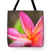Pink Plumeria Detail Tote Bag by Charmian Vistaunet