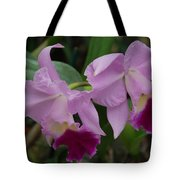 Pink Purple Orchids Tote Bag