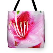 Pink Rhodie Flowers Art Prints Canvas Rhododendrons Baslee Troutman Tote Bag