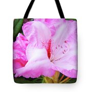 Pink Rhododendron Art Print Floral Canvas Rhodies Baslee Troutman Tote Bag