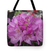 Soft Purple Rhododendron  Tote Bag