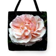 Pink Rose 4 Tote Bag