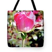 Pink - Rose Bud - Beauty Tote Bag
