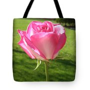 Pink Rose In The Sunlight Tote Bag