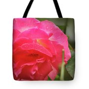 Pink Rose Tote Bag by Kelly Hazel