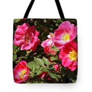 Pink Rose Of Sharon Blooms      Spring     Indiana Tote Bag