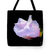 Pink Rose Of Sharon Glowing On A Black Background Tote Bag
