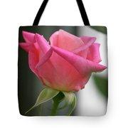 Pink Rose Squared Tote Bag