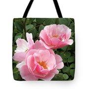 Pink Roses 1 Tote Bag